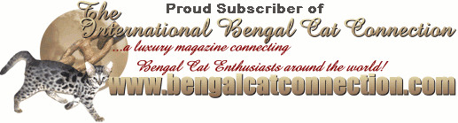 The International Bengal Cat Connection